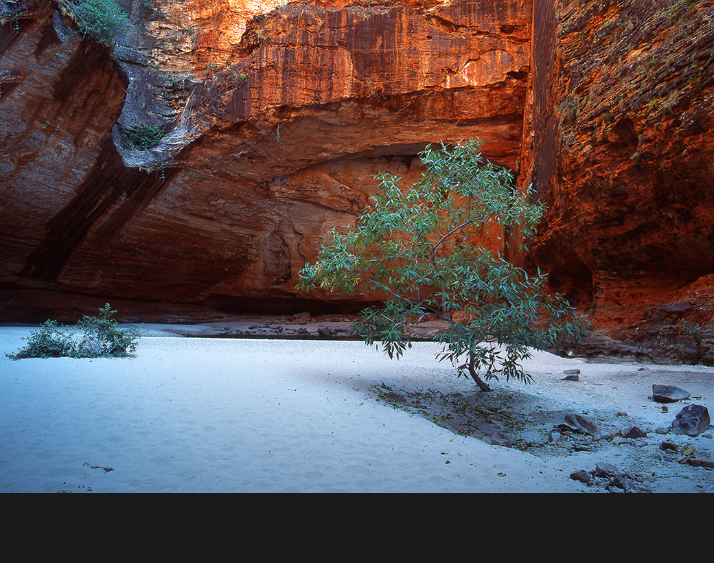 11_Cathedral_Gorge_Western_Australia